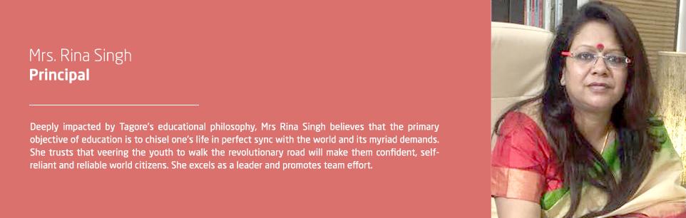 Principal msg website (1)