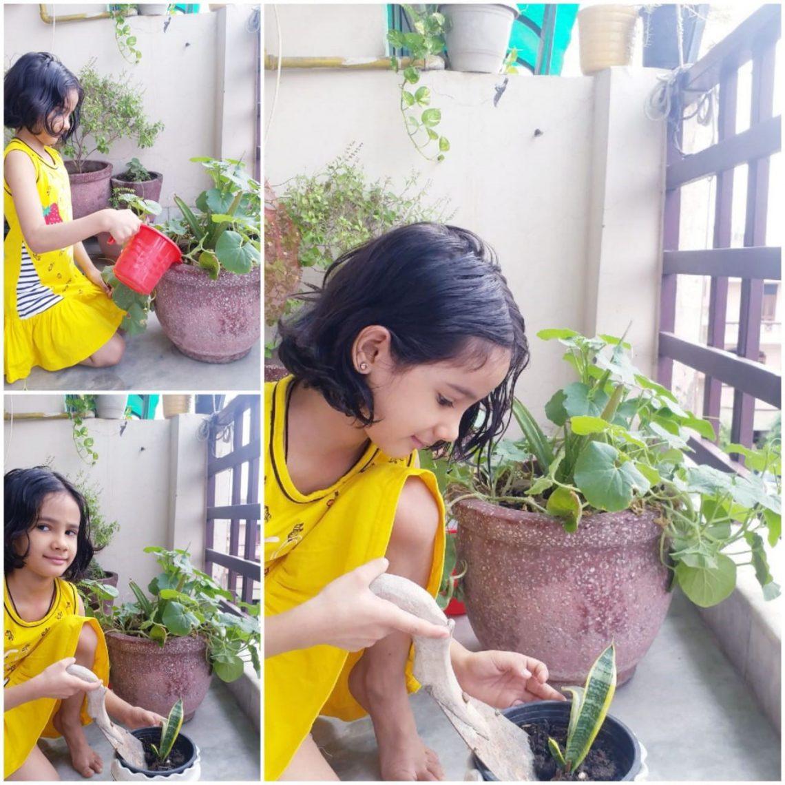 Love nature, Plant trees